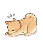 可愛い柴犬の日常スタンプ2(個別スタンプ:04)