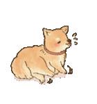 可愛い柴犬の日常スタンプ2(個別スタンプ:06)