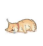 可愛い柴犬の日常スタンプ2(個別スタンプ:07)