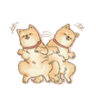 可愛い柴犬の日常スタンプ2(個別スタンプ:08)