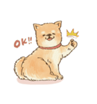 可愛い柴犬の日常スタンプ2(個別スタンプ:09)