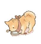 可愛い柴犬の日常スタンプ2(個別スタンプ:10)