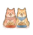 可愛い柴犬の日常スタンプ2(個別スタンプ:11)