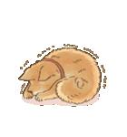 可愛い柴犬の日常スタンプ2(個別スタンプ:12)