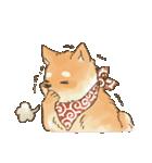 可愛い柴犬の日常スタンプ2(個別スタンプ:25)