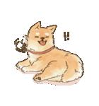 可愛い柴犬の日常スタンプ2(個別スタンプ:26)
