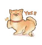 可愛い柴犬の日常スタンプ2(個別スタンプ:33)