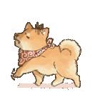 可愛い柴犬の日常スタンプ2(個別スタンプ:34)