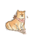 可愛い柴犬の日常スタンプ2(個別スタンプ:36)
