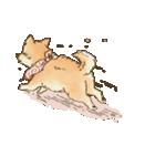可愛い柴犬の日常スタンプ2(個別スタンプ:38)