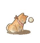 可愛い柴犬の日常スタンプ2(個別スタンプ:40)