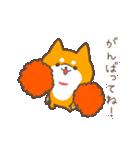 動く!もふ柴~冬~(個別スタンプ:01)