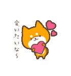 動く!もふ柴~冬~(個別スタンプ:02)