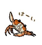 サワガニ君(個別スタンプ:02)
