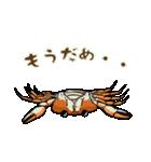 サワガニ君(個別スタンプ:05)