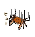 サワガニ君(個別スタンプ:17)