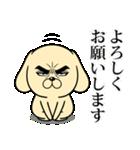 目ヂカラ☆わんこ4(個別スタンプ:05)