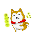ゆる~い秋田犬スタンプ*秋田弁*(個別スタンプ:13)