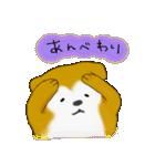 ゆる~い秋田犬スタンプ*秋田弁*(個別スタンプ:17)