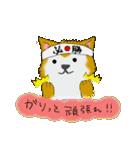 ゆる~い秋田犬スタンプ*秋田弁*(個別スタンプ:18)