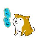 ゆる~い秋田犬スタンプ*秋田弁*(個別スタンプ:23)