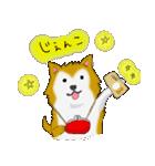 ゆる~い秋田犬スタンプ*秋田弁*(個別スタンプ:27)