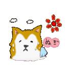 ゆる~い秋田犬スタンプ*秋田弁*(個別スタンプ:35)