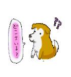 ゆる~い秋田犬スタンプ*秋田弁*(個別スタンプ:36)