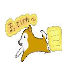 ゆる~い秋田犬スタンプ*秋田弁*(個別スタンプ:37)