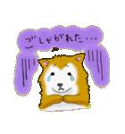 ゆる~い秋田犬スタンプ*秋田弁*(個別スタンプ:38)