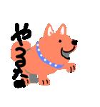 僕は 新年犬。(個別スタンプ:18)