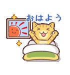 毎日おはよう猫(個別スタンプ:01)