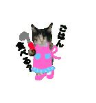 世話焼き猫舎(個別スタンプ:08)