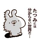 【たつみ】専用3(個別スタンプ:36)