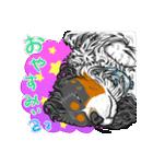 ☆キャバリアキングチャールズスパニエル☆(個別スタンプ:02)
