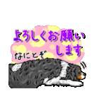☆キャバリアキングチャールズスパニエル☆(個別スタンプ:05)