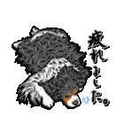 ☆キャバリアキングチャールズスパニエル☆(個別スタンプ:11)