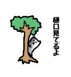 樋口さんのスタンプ(個別スタンプ:30)
