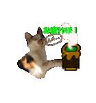 お祝い猫舎(個別スタンプ:11)