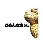 リアルなホシガメ(個別スタンプ:02)