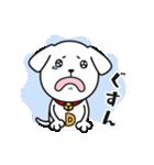 子犬のライナくん(個別スタンプ:15)