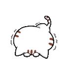 ゆるゆる猫スタンプ3(個別スタンプ:14)