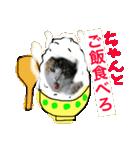 見習い猫舎(個別スタンプ:03)