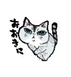 町田尚子の猫スタンプ ゆきちゃん 京都弁(個別スタンプ:08)