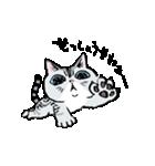 町田尚子の猫スタンプ ゆきちゃん 京都弁(個別スタンプ:09)