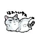 町田尚子の猫スタンプ ゆきちゃん 京都弁(個別スタンプ:13)