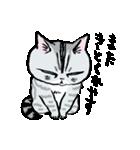 町田尚子の猫スタンプ ゆきちゃん 京都弁(個別スタンプ:24)