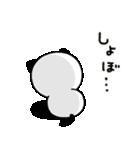文字デカめ♪キモチ伝える❤パンダねこ(個別スタンプ:16)