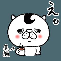 猫野富男3