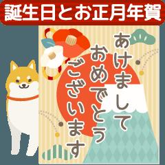 [LINEスタンプ] 仕掛けアニメ▶誕生日とお正月年賀状 (1)